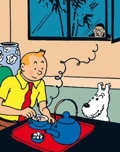 tintin-indotherm