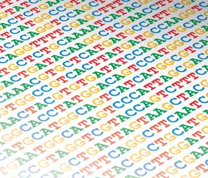 גם זה טקסט. האם דף נייר ועליו רצף DNA, בתוספת מעבדה מלאה ציוד יקר, יכול להיחשב חי?
